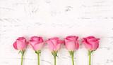 Rosenhintergrund