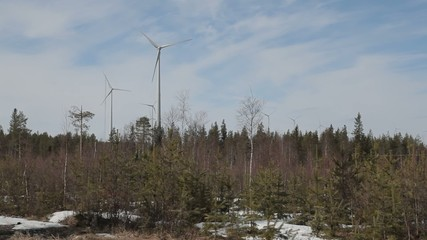 Free power in the forrest