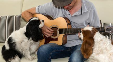 Guitariste et chiens