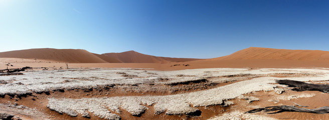 beautiful landscape of Hidden Vlei in Namib desert panorama