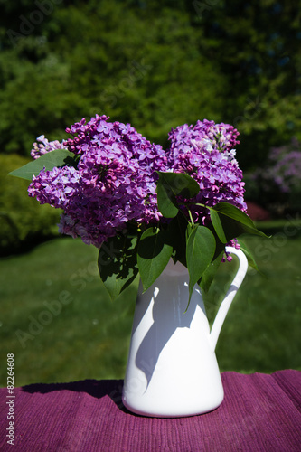 Foto op Canvas Lilac Flieder 2