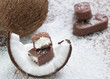 chocolate bar with coconut filling. Shallow dof