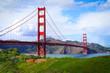Spring in San Francisco - 82271661