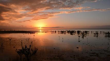 Brilliant golden sunset over tropical Caribbean mangrove lagoon