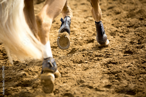 Poster Paardensport Equestrian Sports