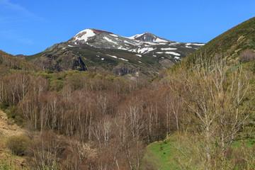 Abedular y Pico Tambarón. Sierra de Gistredo, León.