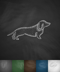 german badger-dog icon
