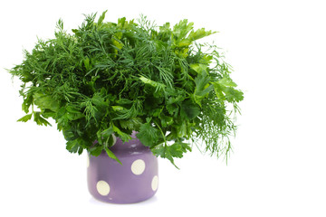 fresh parsley and dill isolated on white