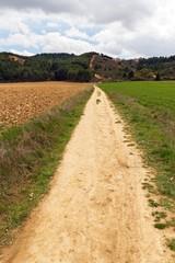 Largo Camino de Tierra