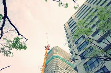高層マンションと空と木