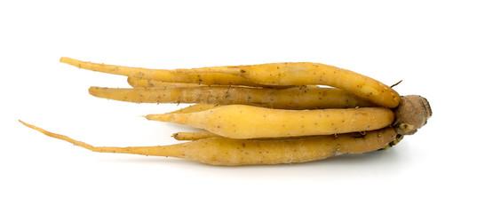 Fingerroot, Kaempfer, Boesenbergia on white background