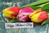 Fototapety Happy Mother's day card with colorful tulips