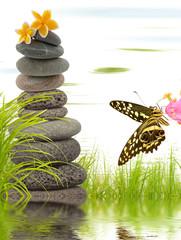 composition aquatique zen, galets, herbe et papillon