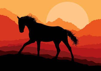 Wild horse in nature vector background landscape freedom concept