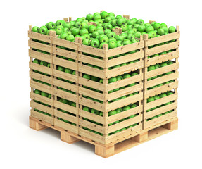 Green apples in wooden crates