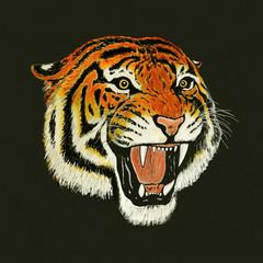 tiger roar drawing