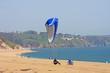Leinwandbild Motiv paraglider landing on Strete beach