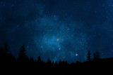 Night sky with trees - 82334064