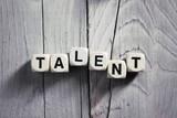 Talent. Blocks on wooden background. Vintage style.