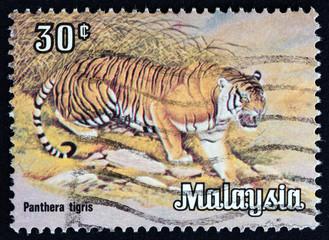 Tiger (Malaysia 1979)