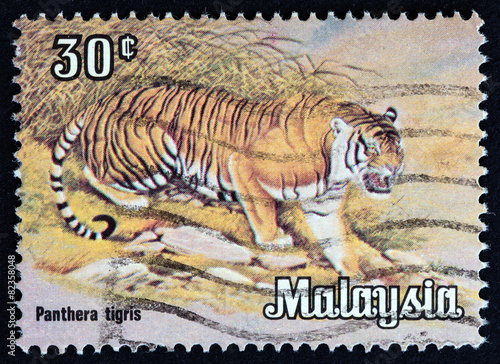 Deurstickers Tijger Tiger (Malaysia 1979)