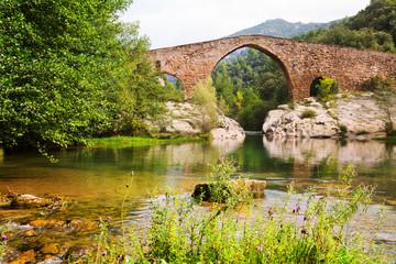 Medieval arched bridge over Llobregat river in  Pyrenees