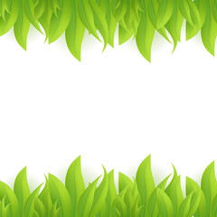 Green grass, vector