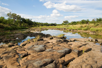 River in Kruger National Park, South Africa.