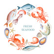Watercolor set of seafood - 82372211