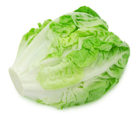 Fresh salad romaine lettuce isolated on white background