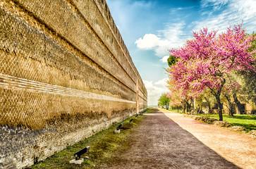 Historical Walls inside Villa Adriana (Hadrian's Villa), Tivoli,