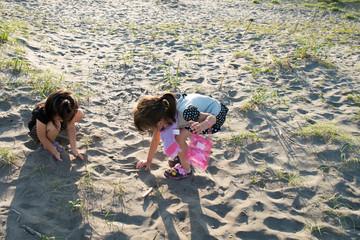 砂浜で貝を探す子供達
