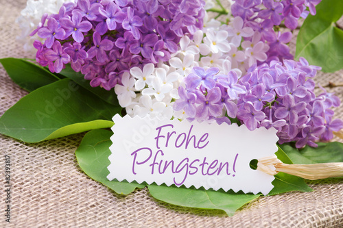 Staande foto Lilac