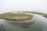 New England Salt Marsh