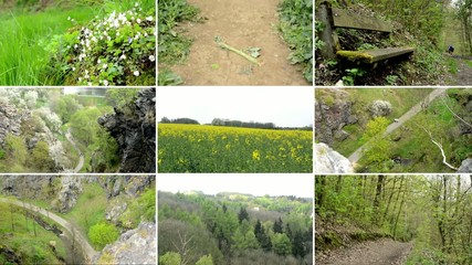 montage - nature - path with bench, fields with plants etc.