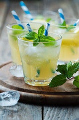 Fresh cocktail witn soda, lemon and mint