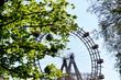 canvas print picture - Leuchtende Blätter vor dem Wiener Riesenrad