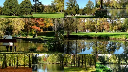 montage - Autumn park (forest - trees) - people walking