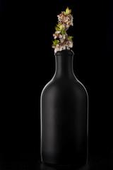 Spring cherry blossom in black bottle