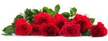 "Постер, картина, фотообои ""Few red roses"""