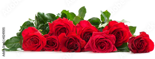 Deurstickers Roses Few red roses