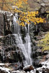 foresta con cascata in autunno appennino corno alle scale