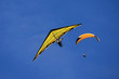 Hang Glider and Paraglider - 82421220
