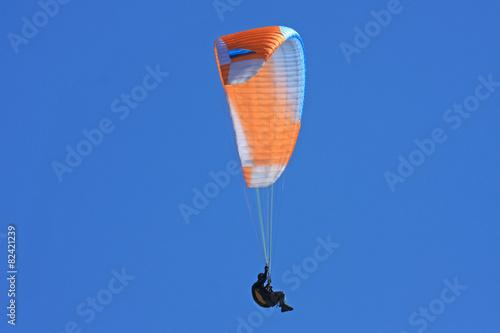 paraglider - 82421239