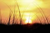 Golden sunset on the gulf coast