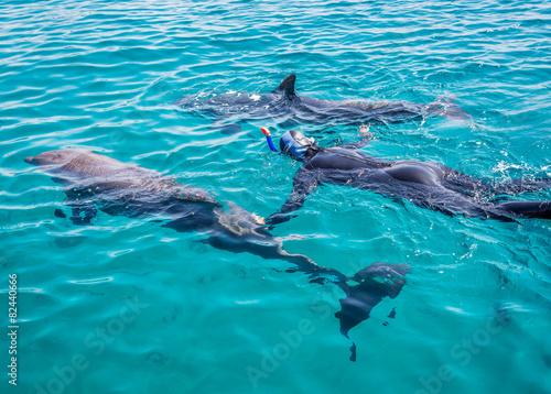 Deurstickers Dolfijn Snorkeilng with doplhins