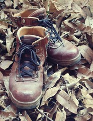 Vintage leather shoes in autumn forest