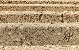 Furrows Abstract poster