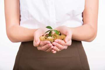 Hands holding plant growing from coins as symbol of money growth