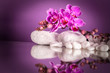orchidee reflex - 82457632